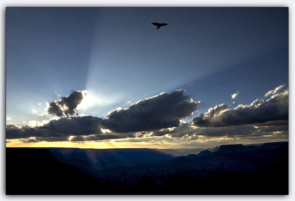 photoblog image Flying high