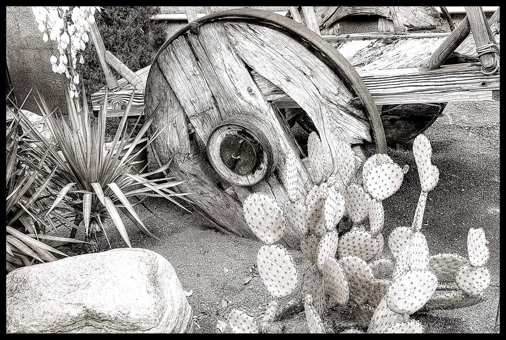 photoblog image Sedona ,still life