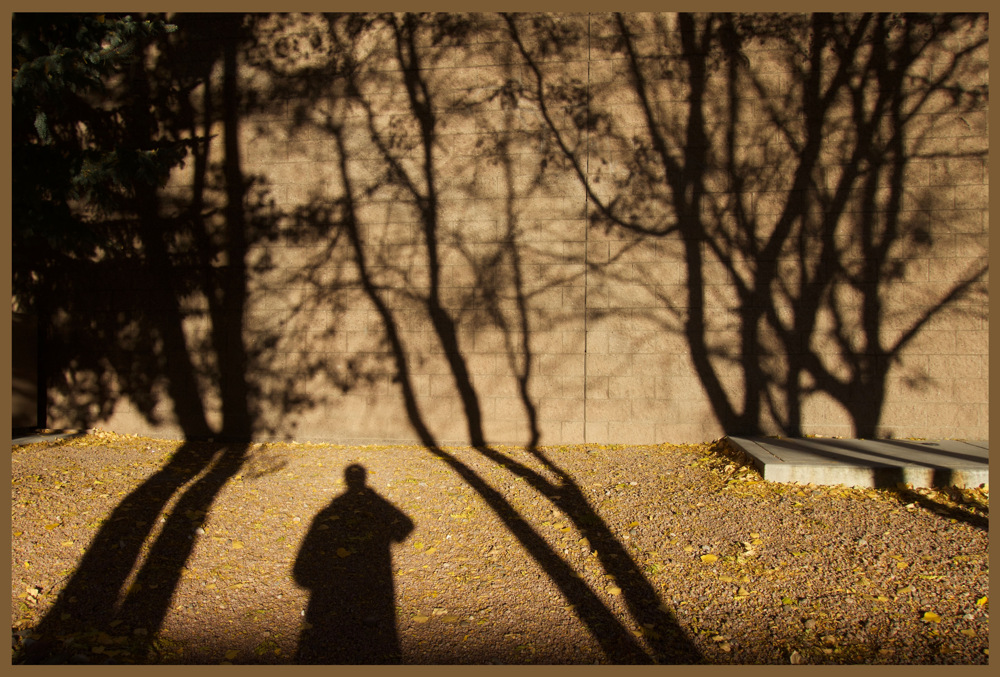 photoblog image A shadow of my former self....