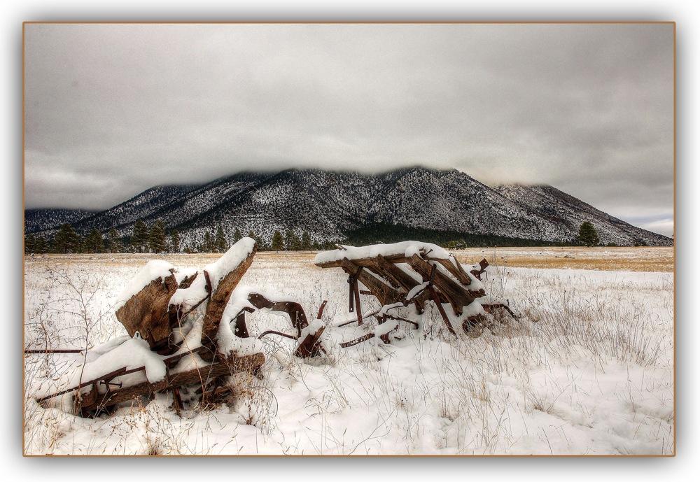 photoblog image Buffalo snow.