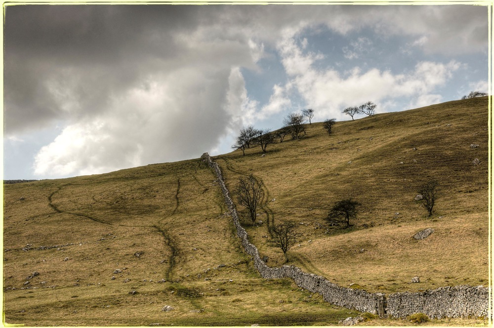 photoblog image Stonewall near Malham