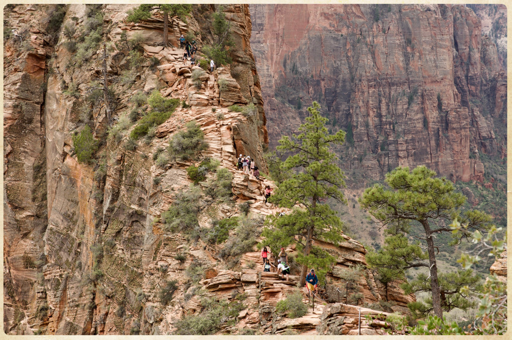 photoblog image Angels landing .