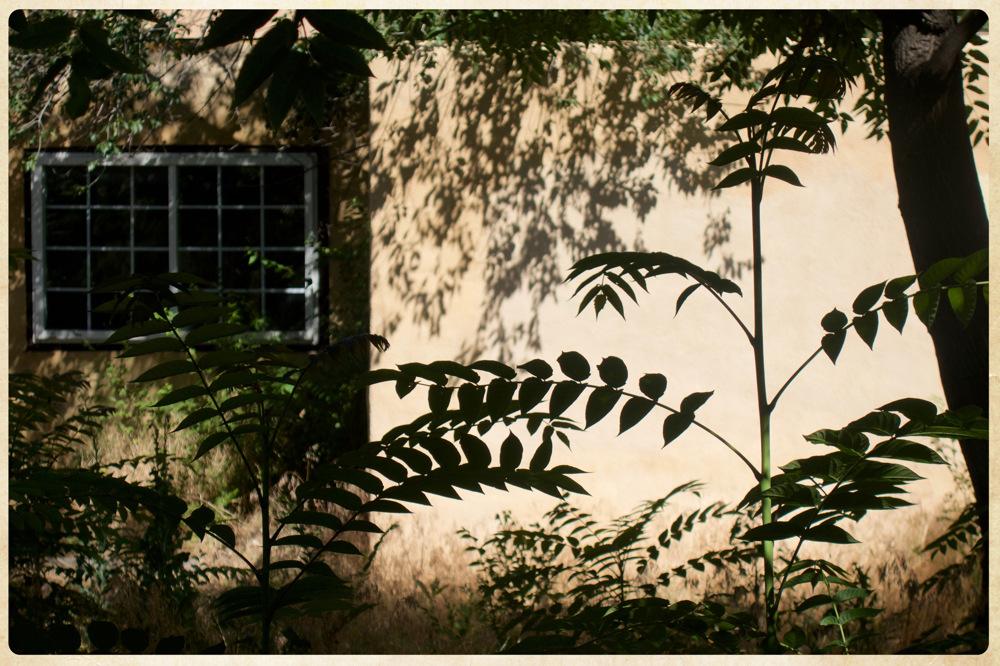 photoblog image Santa Fe shadows